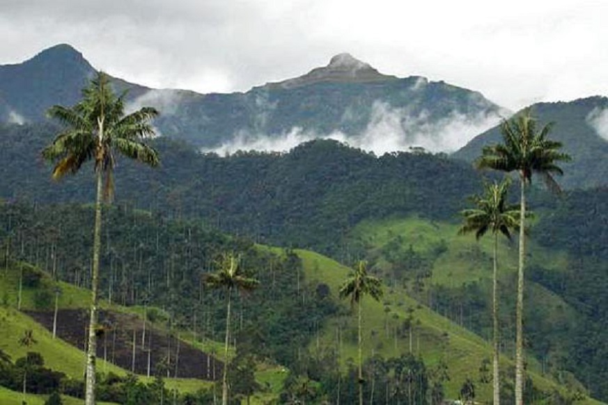 andes tropicales