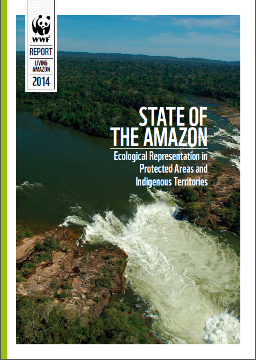 the state of amazonia