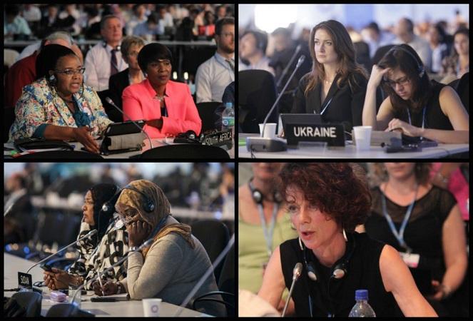collagen_delegaciones_plenaria1