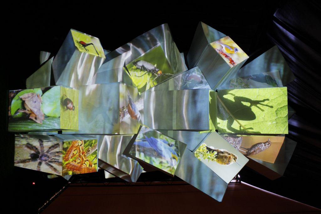 imagen 13 - arbol de cubos